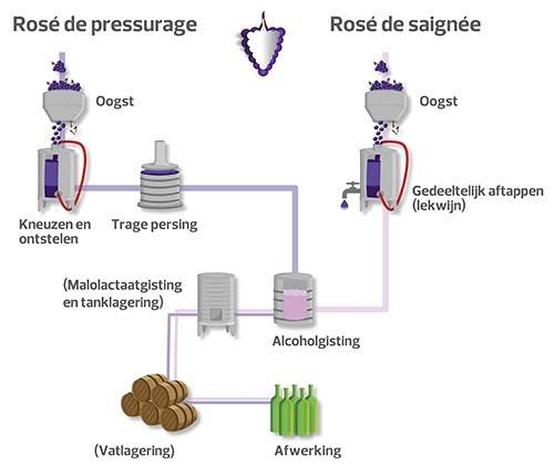 Hoe wordt Rosé gemaakt?